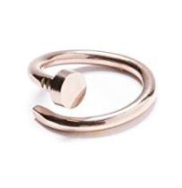 anillo 1
